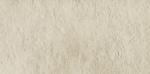 Grigia beige 1B MAT 598x298 / 11mm