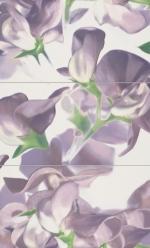 Bloom Violet 593x985 / 8mm
