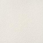 Graniti White 1 MAT 598x598 / 11mm