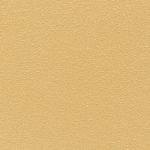 Mono sloneczne (RAL D2/080 80 50) 200x200 / 10mm